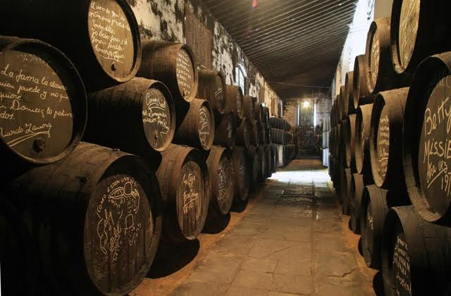 Visit to different wineries in Jerez or in Sanlúcar de Barrameda